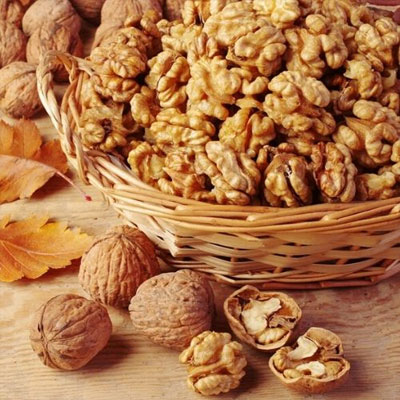 Kashmiri Walnut Suppliers & Exporters in Muzaffarnagar