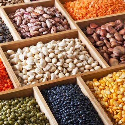 Pulses Suppliers & Exporters in Ukraine